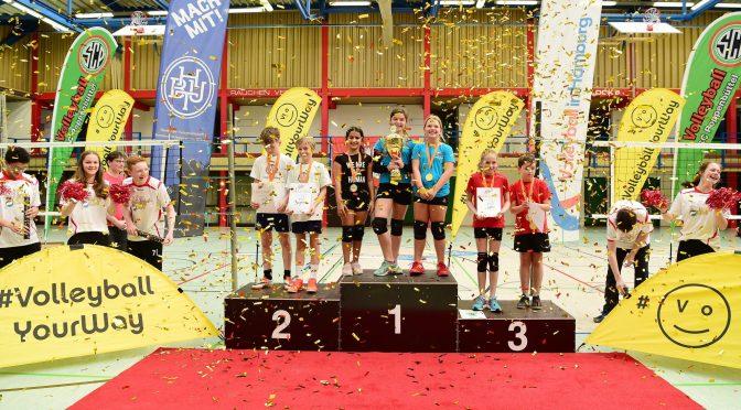 Hamburger Meisterschaft Volleyball Cup